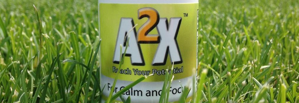A2X Anxiety